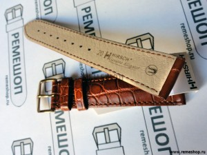 HIRSCH Genuine Alligator