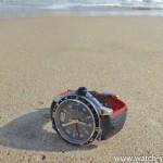 HIRSCH Robby на песке