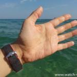 HIRSCH Robby на руке